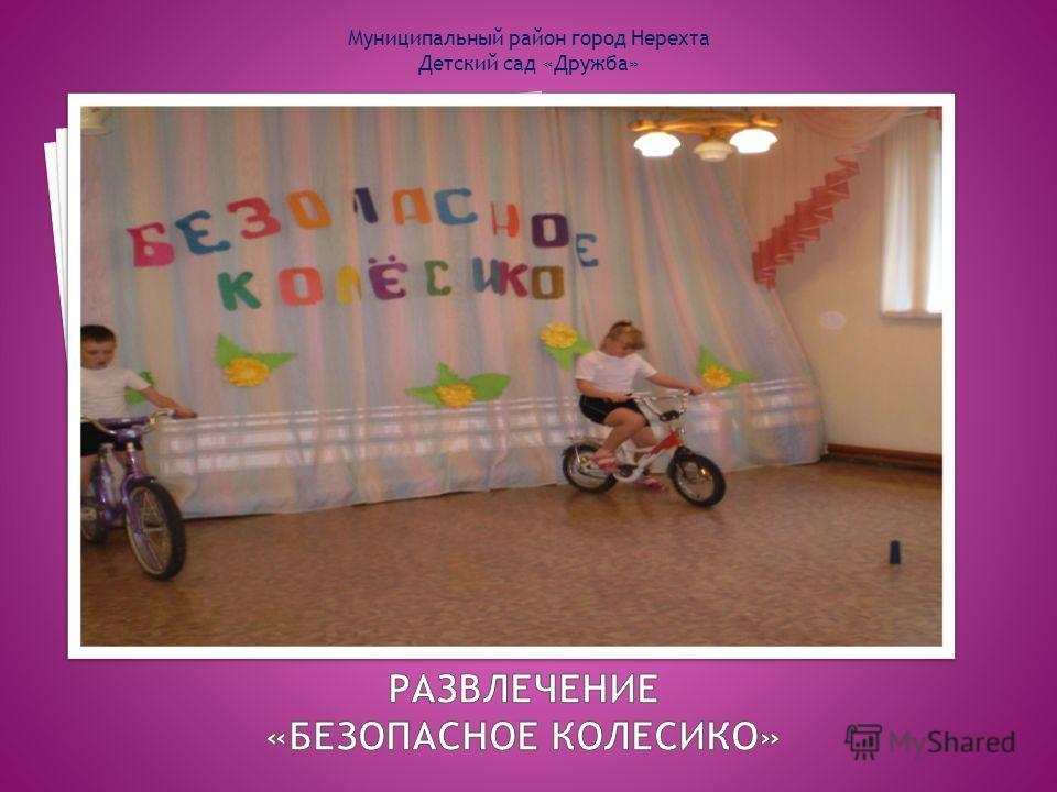 Муниципальный район город Нерехта Детский сад «Дружба»