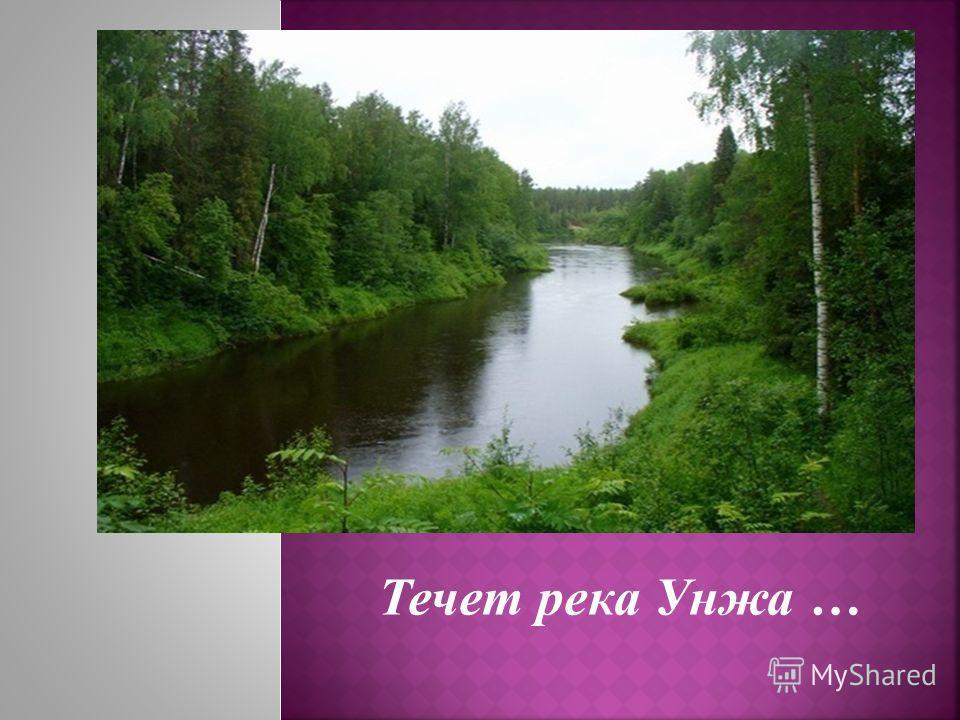 Течет река Унжа …