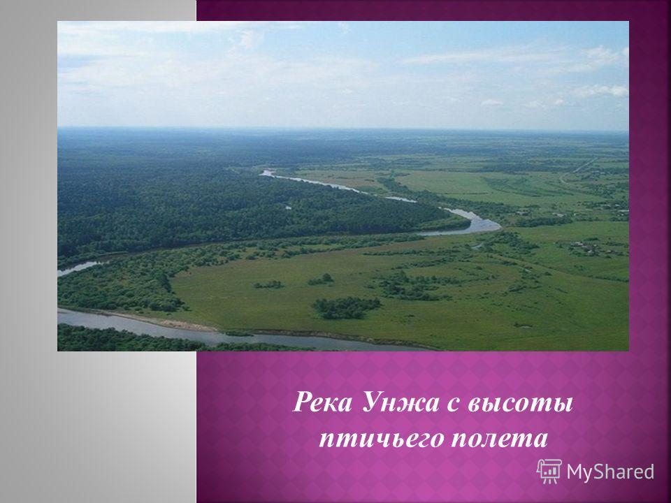 Река Унжа с высоты птичьего полета