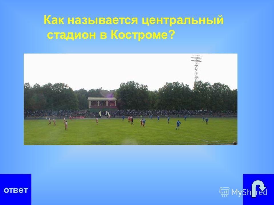 Как называется центральный стадион в Костроме?