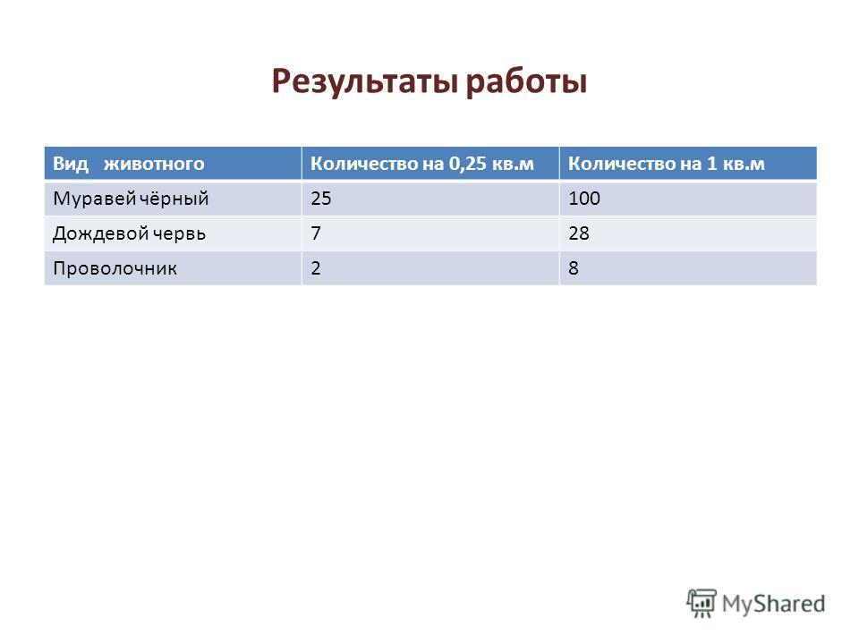 Результаты работы Вид животногоКоличество на 0,25 кв.мКоличество на 1 кв.м Муравей чёрный25100 Дождевой червь728 Проволочник28