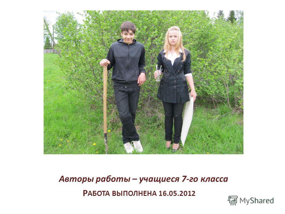 Р АБОТА ВЫПОЛНЕНА 16.05.2012 Авторы работы – учащиеся 7-го класса