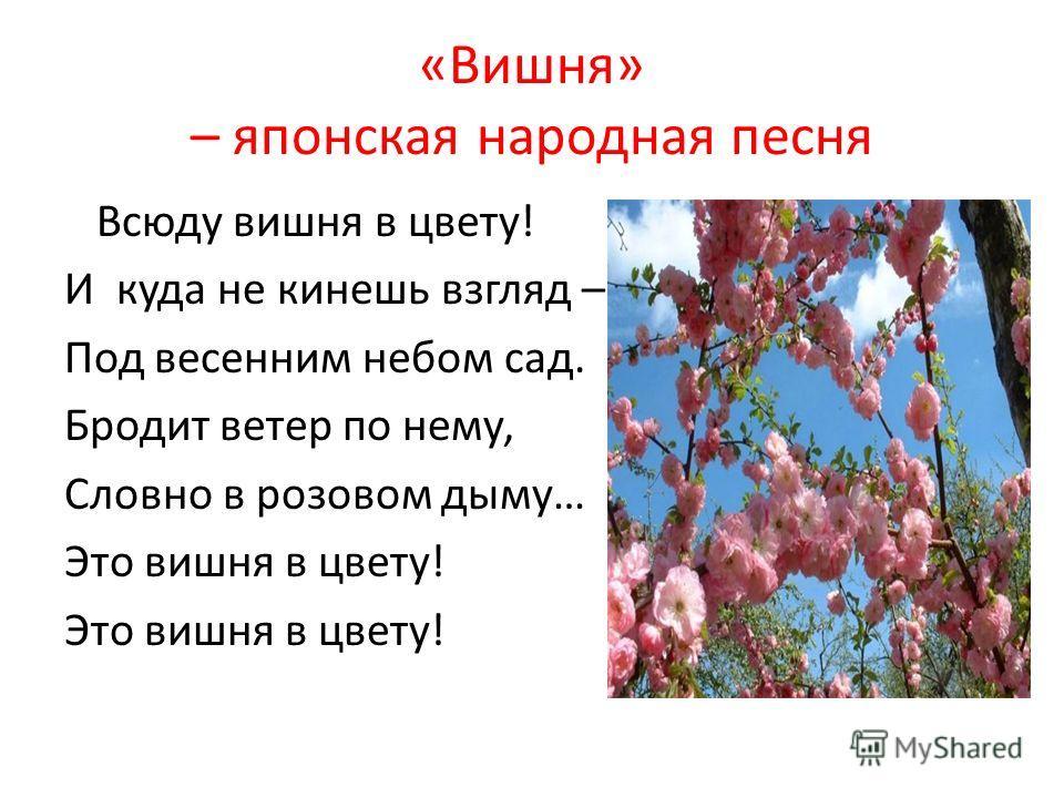 «Вишня» – японская народная песня Всюду вишня в цвету! И куда не кинешь взгляд – Под весенним небом сад. Бродит ветер по нему, Словно в розовом дыму… Это вишня в цвету!