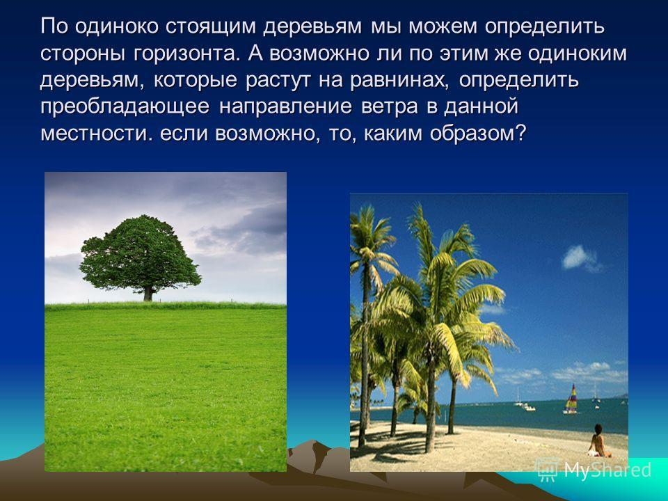 По одиноко стоящим деревьям мы можем определить стороны горизонта. А возможно ли по этим же одиноким деревьям, которые растут на равнинах, определить преобладающее направление ветра в данной местности. если возможно, то, каким образом?