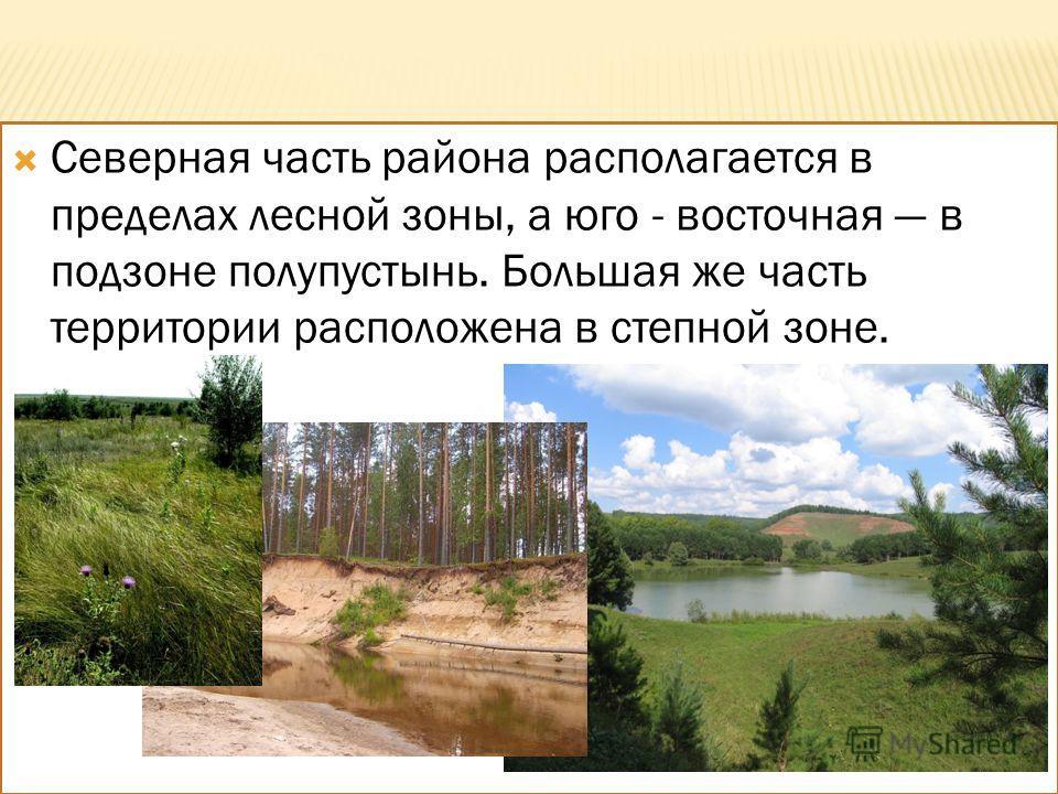 Северная часть района располагается в пределах лесной зоны, а юго - восточная в подзоне полупустынь. Большая же часть территории расположена в степной зоне.