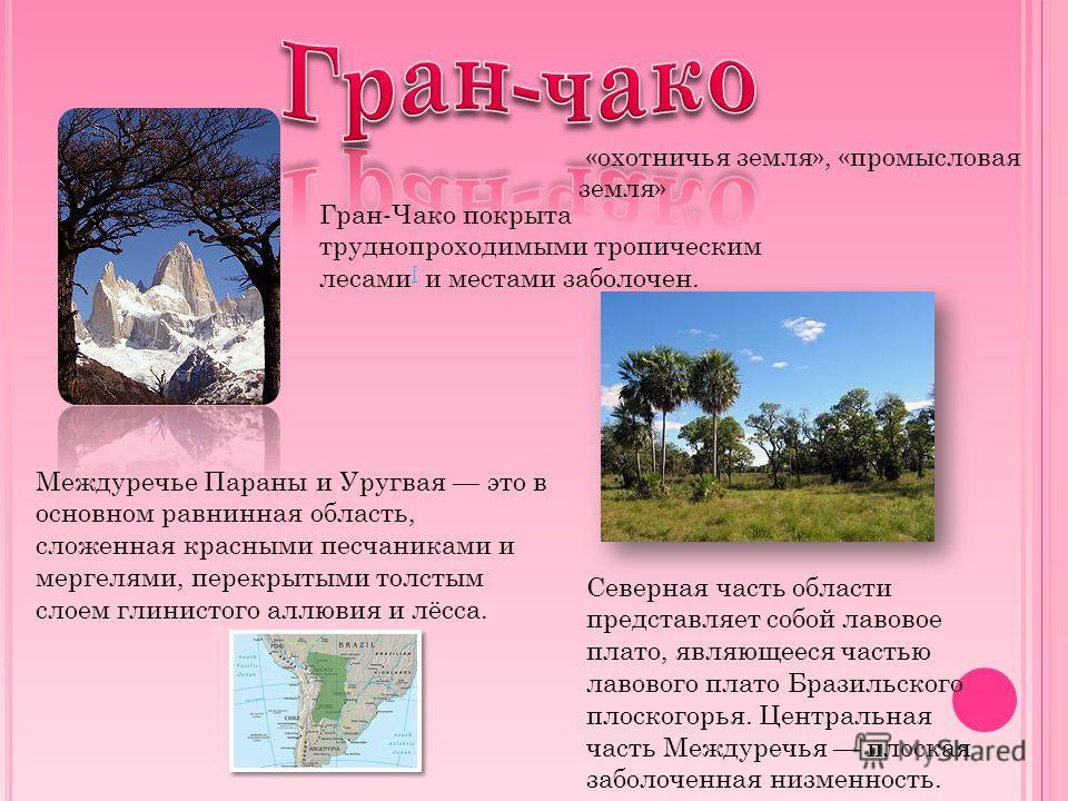 Гран-Чако покрыта труднопроходимыми тропическим лесами [ и местами заболочен. [ Междуречье Параны и Уругвая это в основном равнинная область, сложенная красными песчаниками и мергелями, перекрытыми толстым слоем глинистого аллювия и лёсса. Северная ч