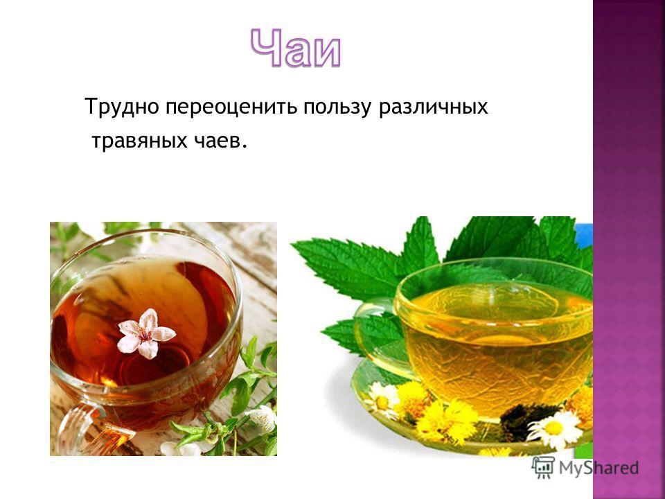 Трудно переоценить пользу различных травяных чаев.