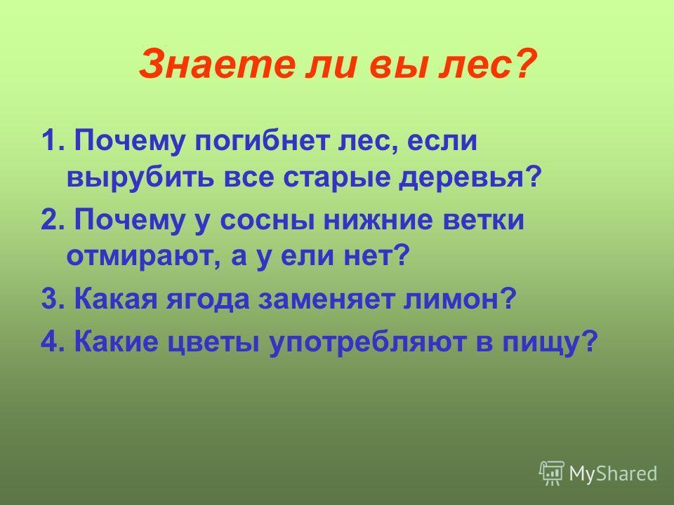 Знаете ли вы лес? 1. Почему погибнет лес, если вырубить все старые деревья? 2. Почему у сосны нижние ветки отмирают, а у ели нет? 3. Какая ягода заменяет лимон? 4. Какие цветы употребляют в пищу?