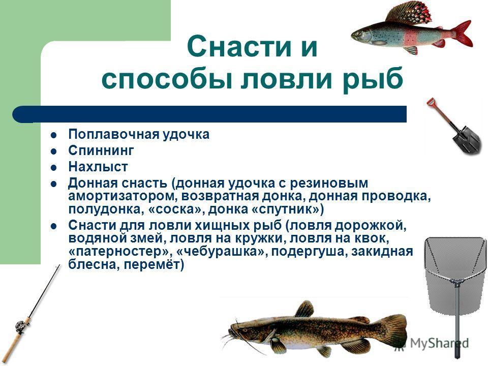 Снасти и способы ловли рыб Поплавочная удочка Спиннинг Нахлыст Донная снасть (донная удочка с резиновым амортизатором, возвратная донка, донная проводка, полудонка, «соска», донка «спутник») Снасти для ловли хищных рыб (ловля дорожкой, водяной змей,