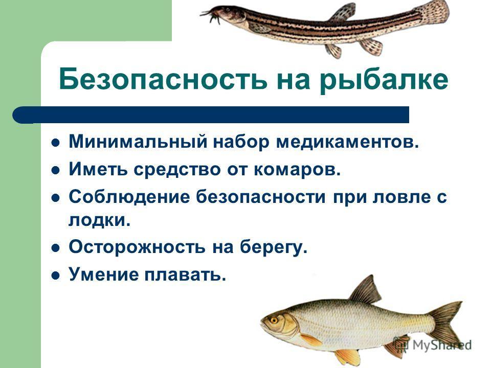 Безопасность на рыбалке Минимальный набор медикаментов. Иметь средство от комаров. Соблюдение безопасности при ловле с лодки. Осторожность на берегу. Умение плавать.
