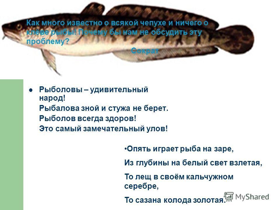 Рыболовы – удивительный народ! Рыбалова зной и стужа не берет. Рыболов всегда здоров! Это самый замечательный улов! Опять играет рыба на заре, Из глубины на белый свет взлетая, То лещ в своём кальчужном серебре, То сазана колода золотая. Как много из