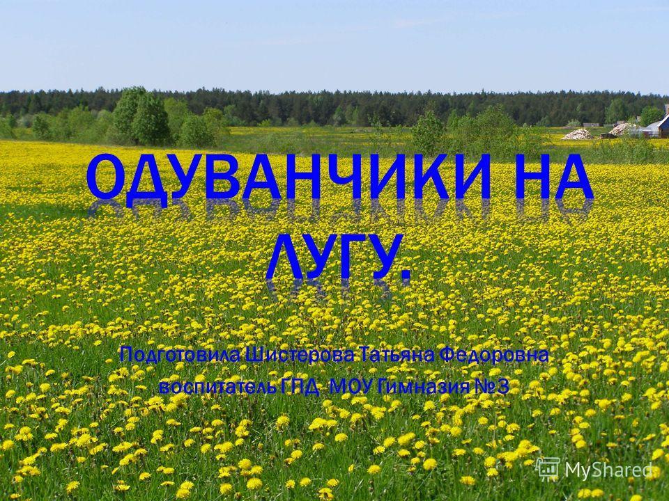 Подготовила Шистерова Татьяна Федоровна воспитатель ГПД МОУ Гимназия 3