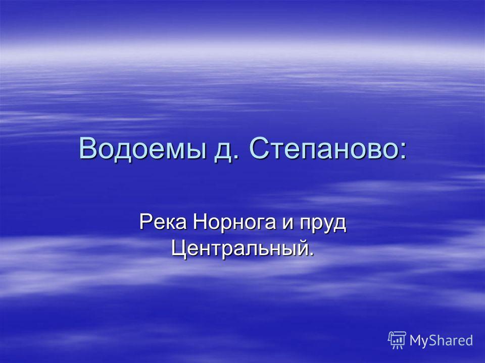 Водоемы д. Степаново: Река Норнога и пруд Центральный.