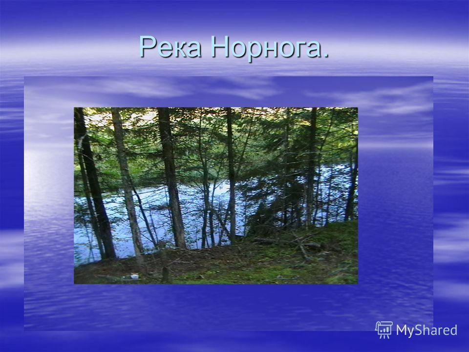 Река Норнога.