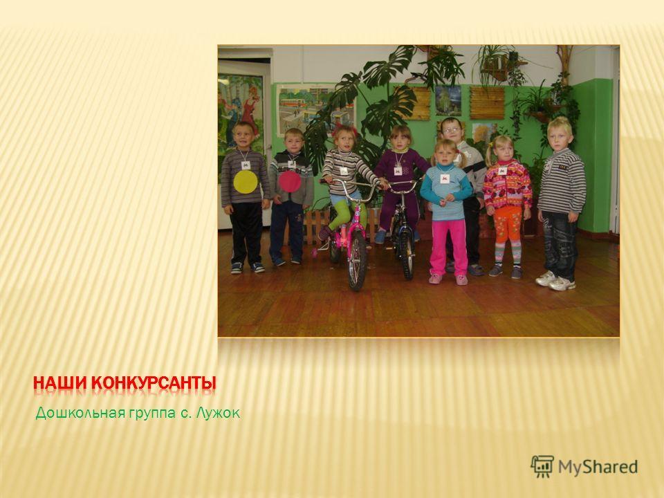 Дошкольная группа с. Лужок