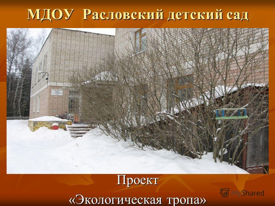 МДОУ Расловский детский сад Проект «Экологическая тропа»