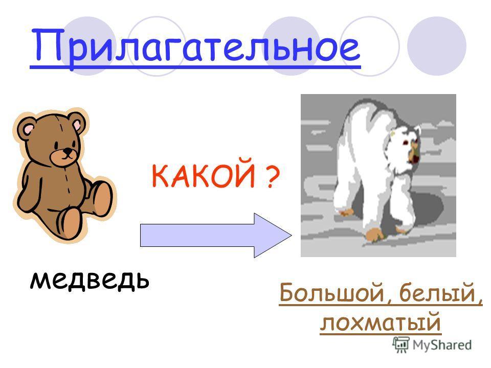 Прилагательное медведь КАКОЙ ? Большой, белый, лохматый