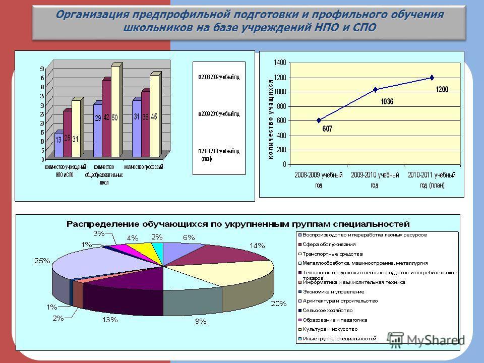 Организация предпрофильной подготовки и профильного обучения школьников на базе учреждений НПО и СПО 3