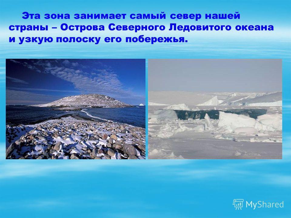 Эта зона занимает самый север нашей страны – Острова Северного Ледовитого океана и узкую полоску его побережья.
