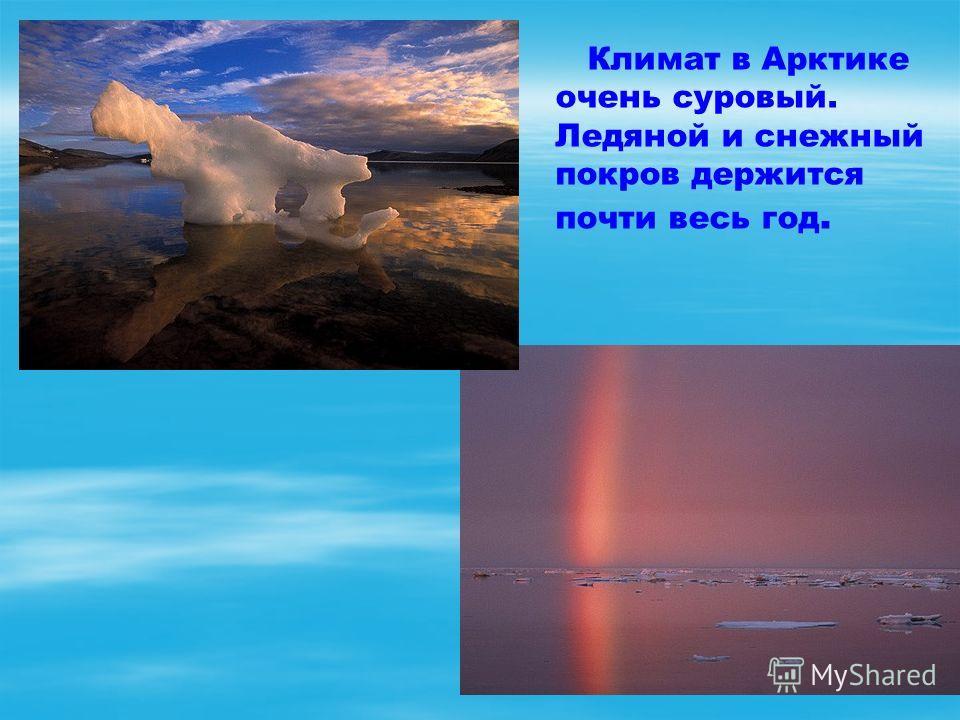 Климат в Арктике очень суровый. Ледяной и снежный покров держится почти весь год.