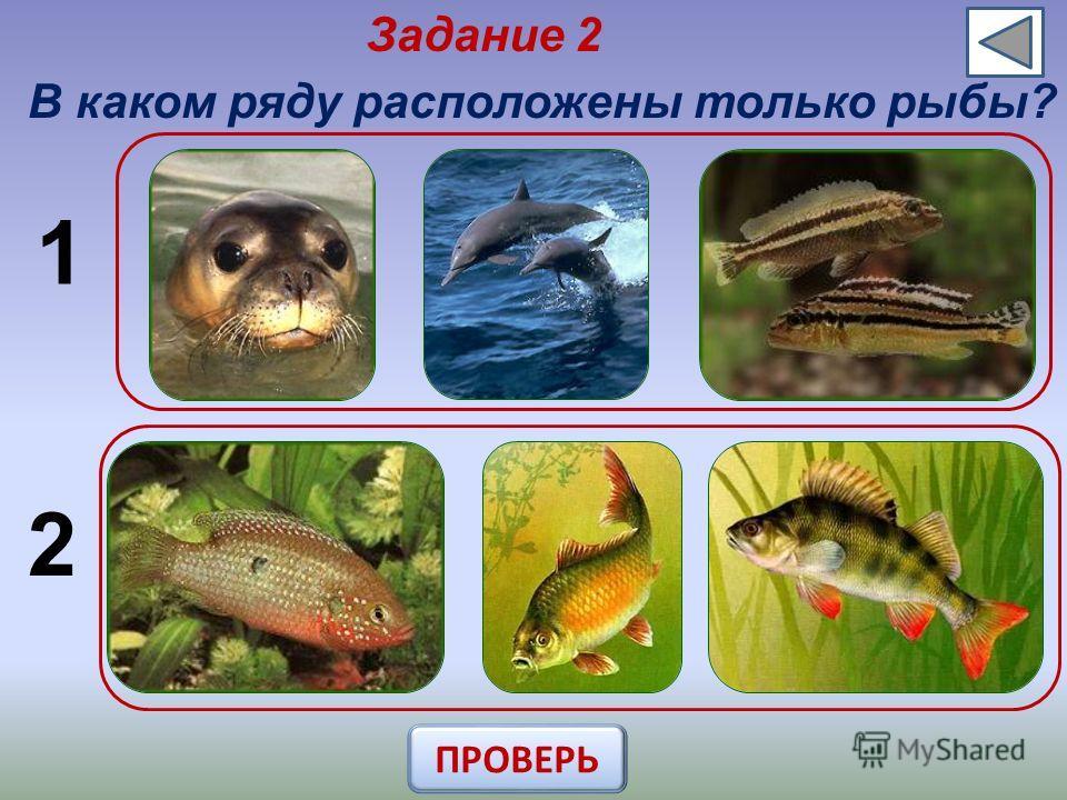 Задание 2 В каком ряду расположены только рыбы? 1 2 ПРОВЕРЬ