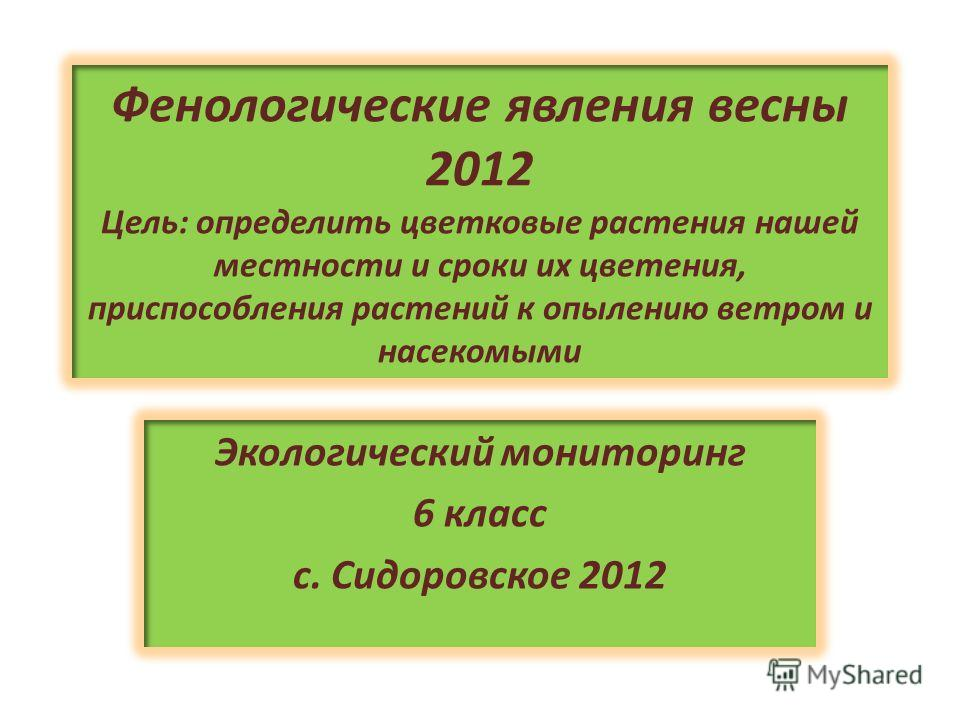 Фенологические явления весны 2012 Цель: определить цветковые растения нашей местности и сроки их цветения, приспособления растений к опылению ветром и насекомыми Экологический мониторинг 6 класс с. Сидоровское 2012