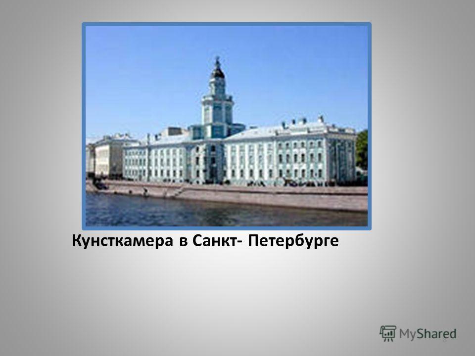 8 Кунсткамера в Санкт- Петербурге