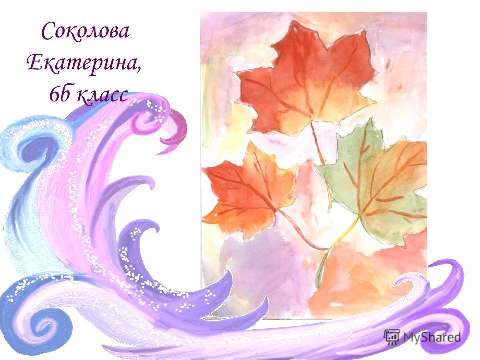 Соколова Екатерина, 6б класс