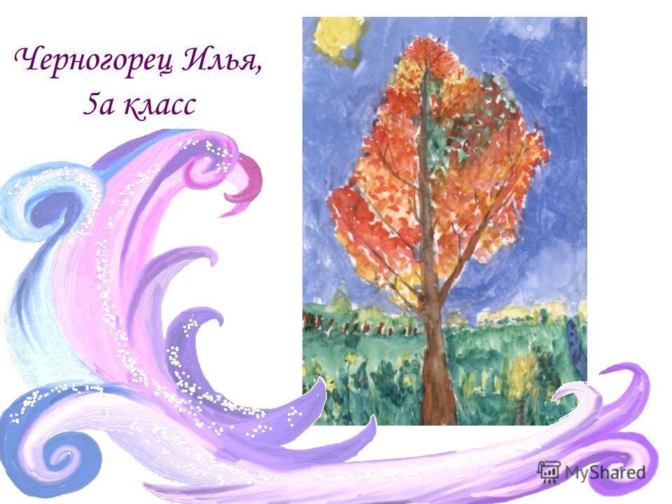 Черногорец Илья, 5а класс