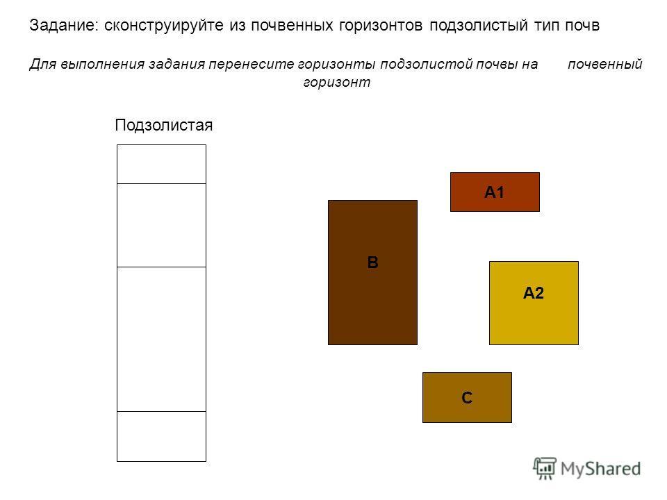 А1 А2А2 В C Задание: сконструируйте из почвенных горизонтов подзолистый тип почв Для выполнения задания перенесите горизонты подзолистой почвы на почвенный горизонт Подзолистая
