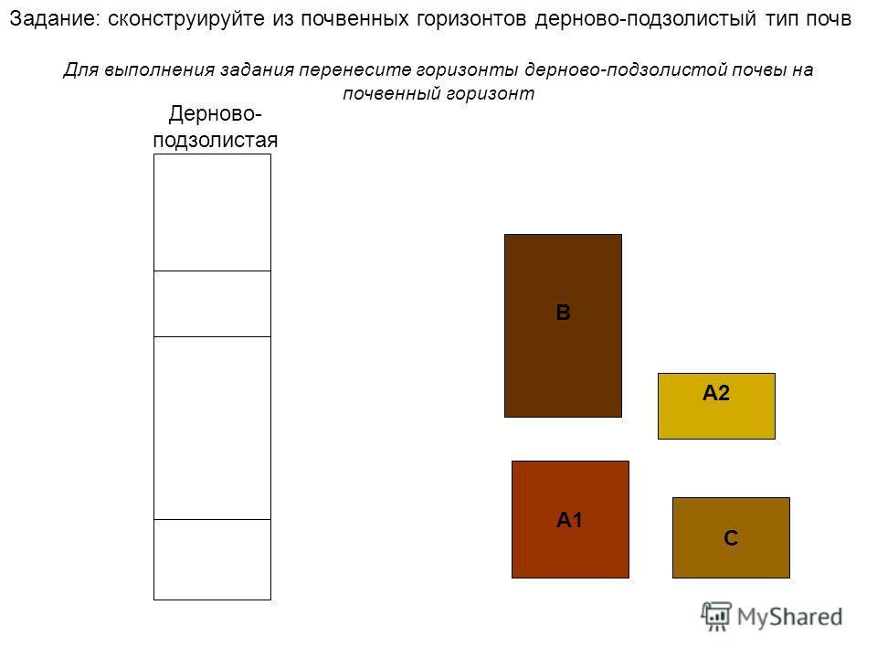 А1 А2А2 В C Задание: сконструируйте из почвенных горизонтов дерново-подзолистый тип почв Для выполнения задания перенесите горизонты дерново-подзолистой почвы на почвенный горизонт Дерново- подзолистая
