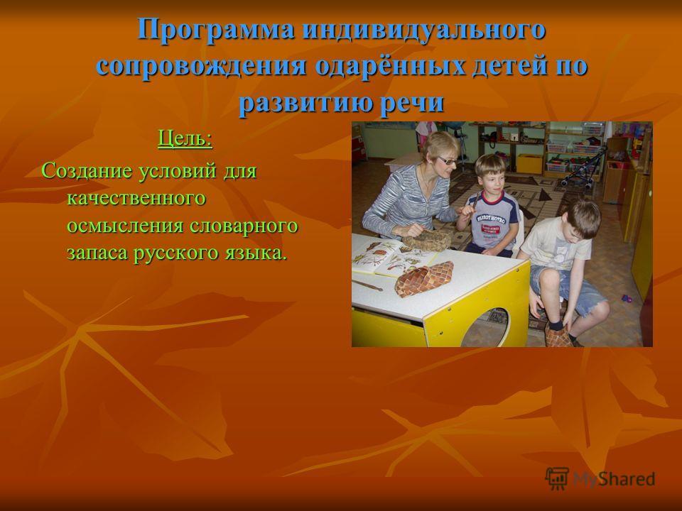 Программа индивидуального сопровождения одарённых детей по развитию речи Цель: Создание условий для качественного осмысления словарного запаса русского языка.