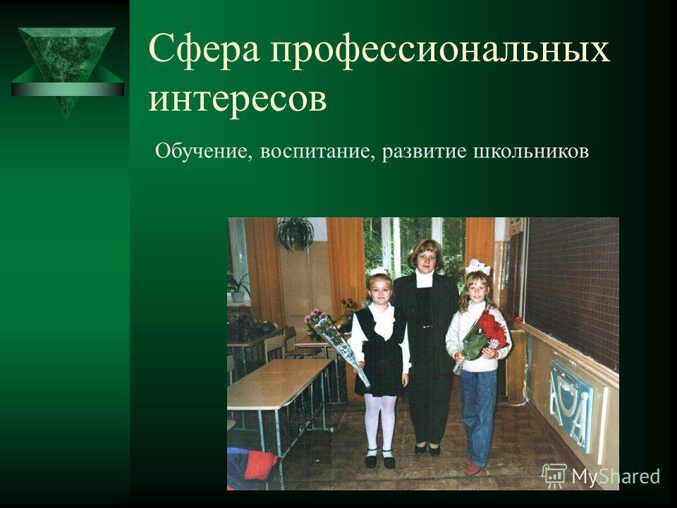 Сфера профессиональных интересов Обучение, воспитание, развитие школьников
