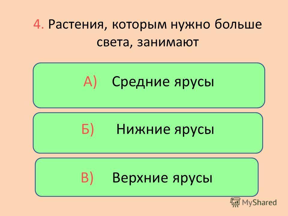 Б) Ельник А) Бор В) Дубрава 3. Если в лесу в основном растут ели – это