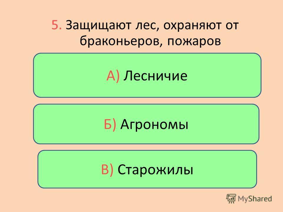 Б) Нижние ярусы А) Средние ярусы В) Верхние ярусы 4. Растения, которым нужно больше света, занимают