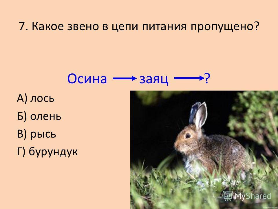 Б) Светолюбивые растения А) Теневыносливые растения В) Влаголюбивые растения 6. Травянистый покров образуют…