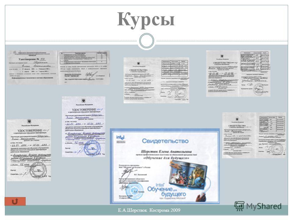 Курсы Е.А.Шерстюк Кострома 2009