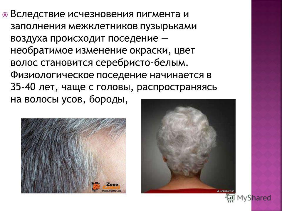 Вследствие исчезновения пигмента и заполнения межклетников пузырьками воздуха происходит поседение необратимое изменение окраски, цвет волос становится серебристо-белым. Физиологическое поседение начинается в 35-40 лет, чаще с головы, распространяясь