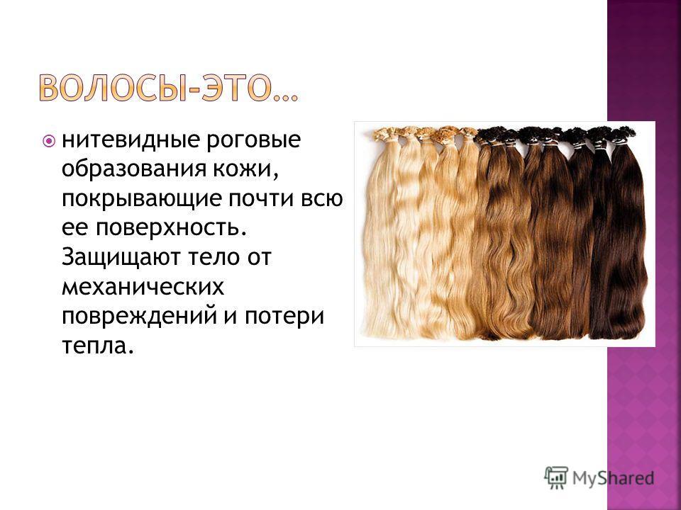 Рецепты масел для лечения волос