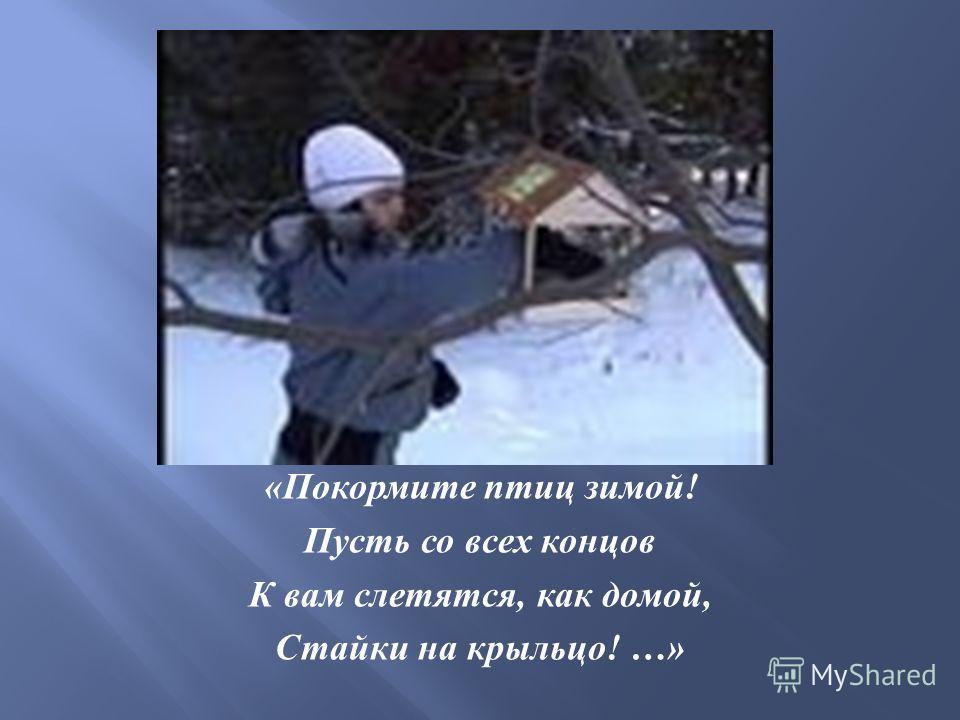 « Покормите птиц зимой ! Пусть со всех концов К вам слетятся, как домой, Стайки на крыльцо ! …»