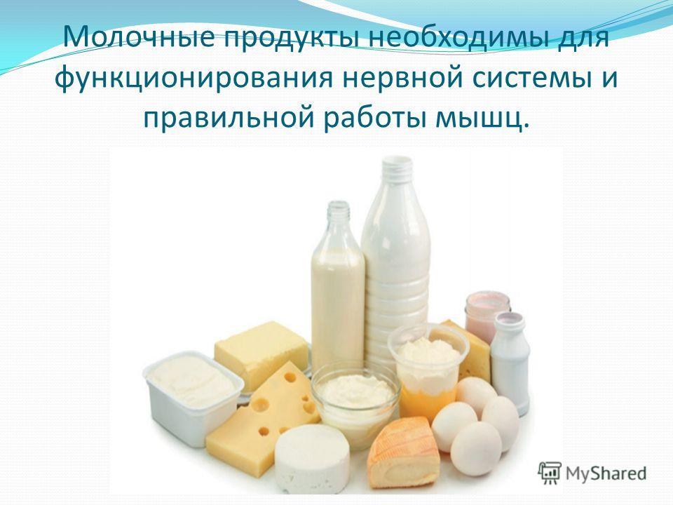 Молочные продукты необходимы для функционирования нервной системы и правильной работы мышц.