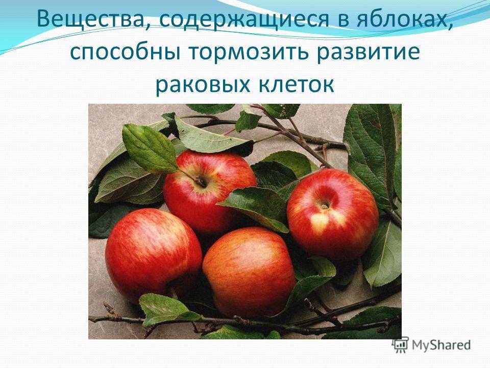 Вещества, содержащиеся в яблоках, способны тормозить развитие раковых клеток