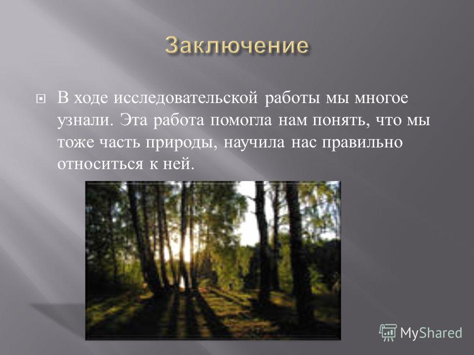 В ходе исследовательской работы мы многое узнали. Эта работа помогла нам понять, что мы тоже часть природы, научила нас правильно относиться к ней.