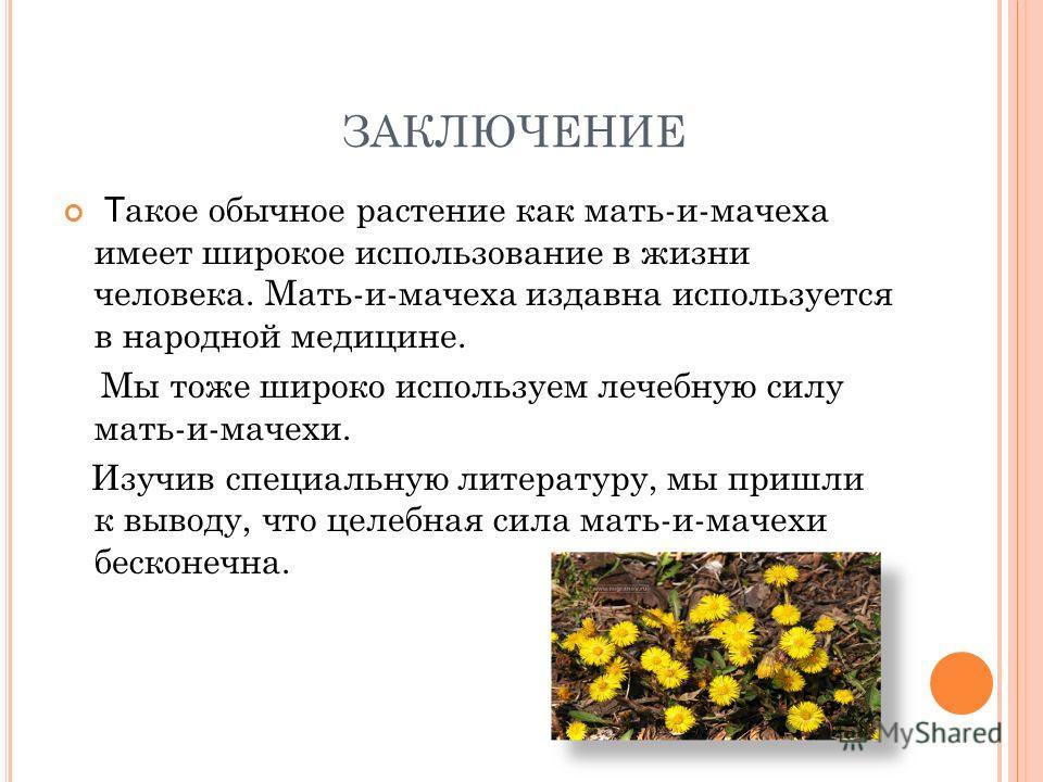 ЗАКЛЮЧЕНИЕ Т акое обычное растение как мать-и-мачеха имеет широкое использование в жизни человека. Мать-и-мачеха издавна используется в народной медицине. Мы тоже широко используем лечебную силу мать-и-мачехи. Изучив специальную литературу, мы пришли