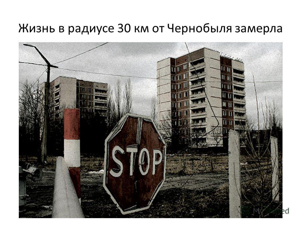 Жизнь в радиусе 30 км от Чернобыля замерла