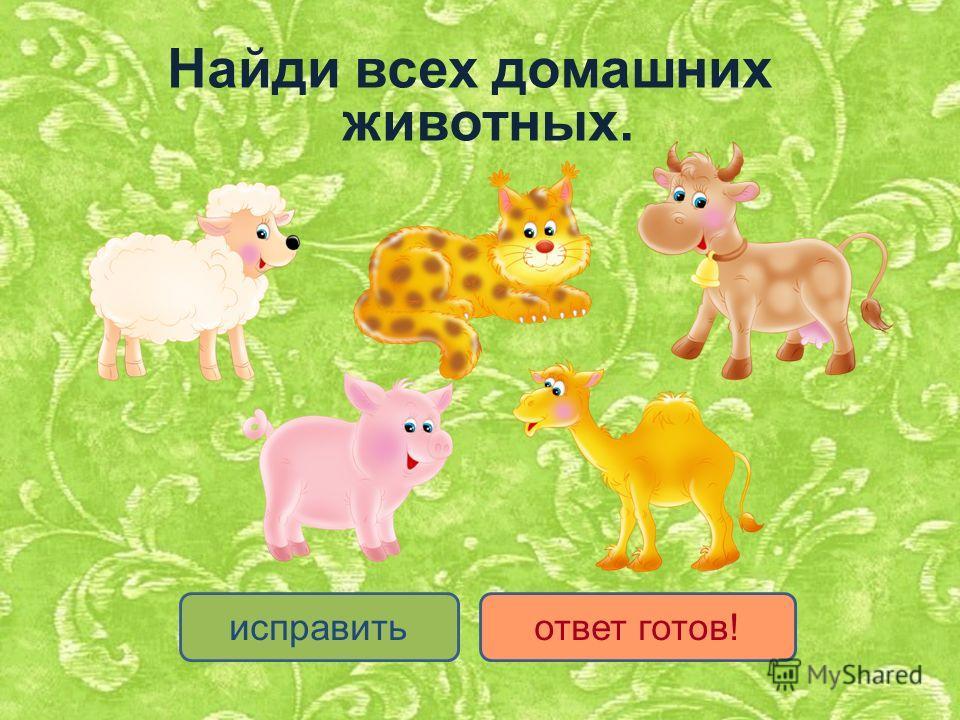 исправитьответ готов! Найди всех домашних животных.