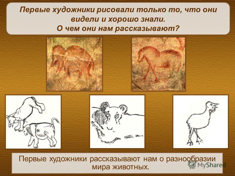 Первые художники рассказывают нам о разнообразии мира животных. Первые художники рисовали только то, что они видели и хорошо знали. О чем они нам рассказывают?