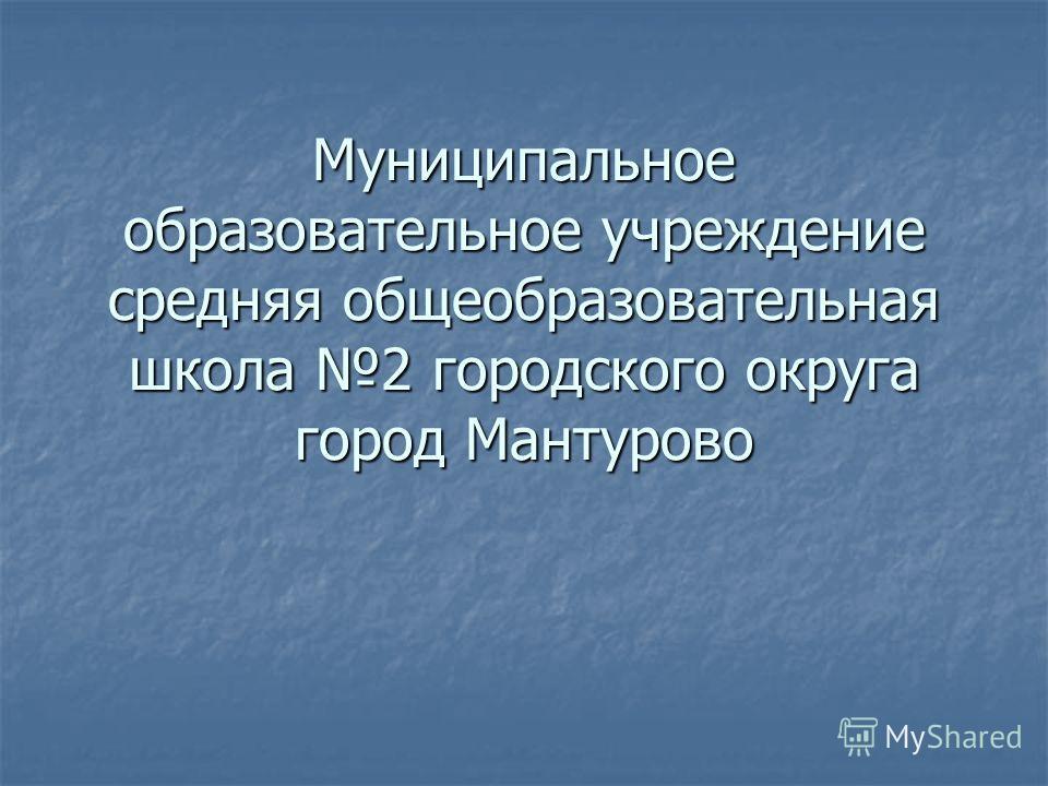 Муниципальное образовательное учреждение средняя общеобразовательная школа 2 городского округа город Мантурово