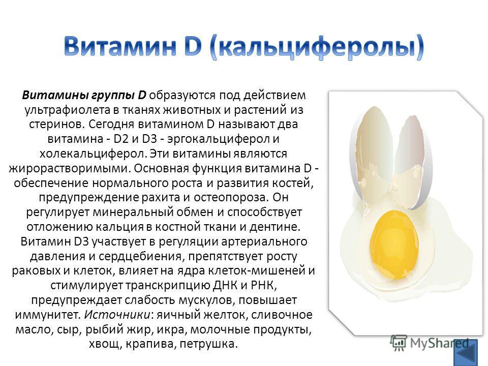 Витамины группы D образуются под действием ультрафиолета в тканях животных и растений из стеринов. Сегодня витамином D называют два витамина - D2 и D3 - эргокальциферол и холекальциферол. Эти витамины являются жирорастворимыми. Основная функция витам