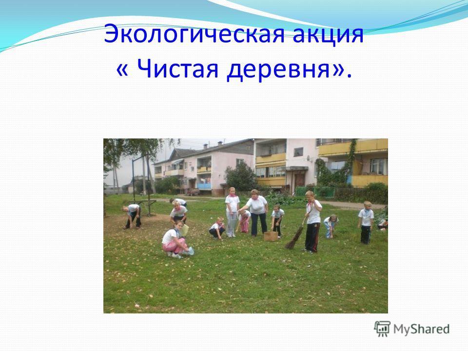 Экологическая акция « Чистая деревня».